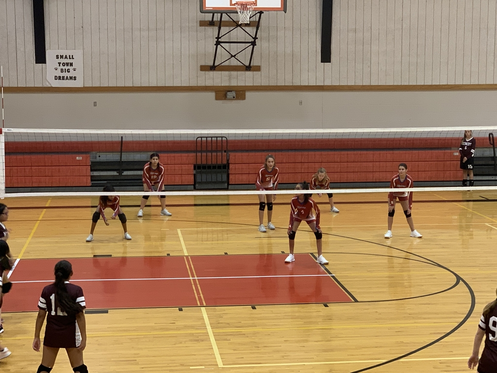 Redwing Volleyball